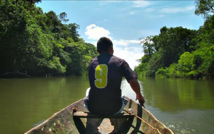 'La selva inflada', en la 60 Seminci