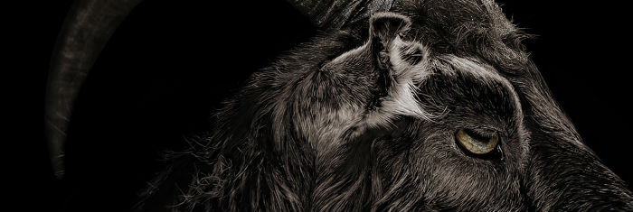 'The Witch', de Robert Eggers (2015)