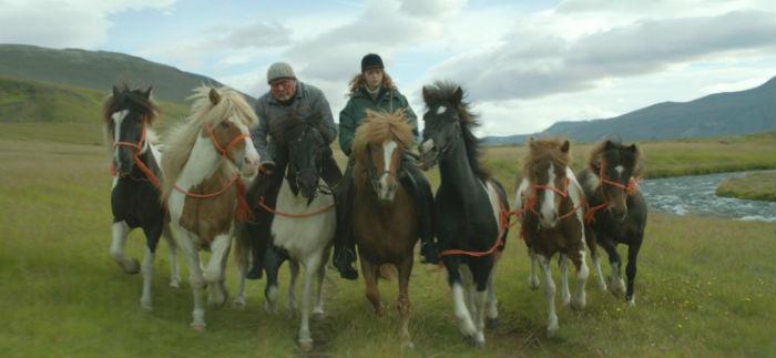 62 Seminci (2017):  Seminci analizará el cine de Islandia a través de 17 títulos