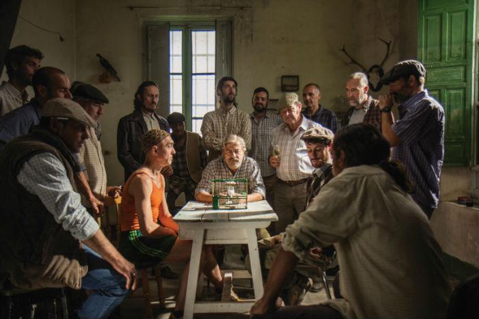'Jaulas', en Histerias de Cine