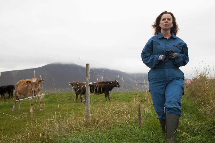 'Héraðið' (The County / Oro blanco), en Histerias de Cine