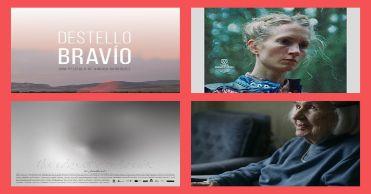 50 IFFR (2021): Crónica (Día 1), en Histerias de Cine