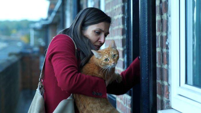 'Cat in the Wall' (Pequeños milagros en Peckham Street), en Histerias de Cine